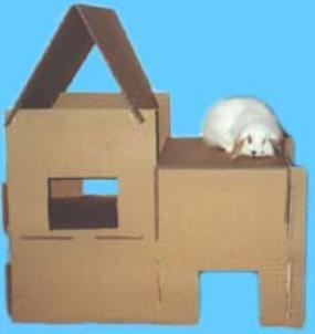 Как сделать домик из коробки для кроликов своими руками 88